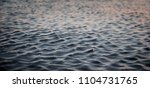 texture of a watery surface in...