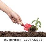 hands with garden tool planting ... | Shutterstock . vector #1104733376