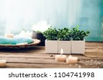 spa and wellness setting with...   Shutterstock . vector #1104741998