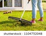 gardening. female adult raking...   Shutterstock . vector #1104752048