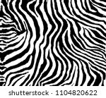 Black And White Zebra Pattern