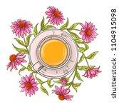 echinacea tea illustration | Shutterstock .eps vector #1104915098
