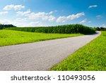 Asphalt Path Between Corn ...