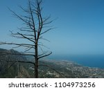 View of Kyrenia mountains and cities on the Mediterranean coast from the upper floors of the ruins of the castle of St. Hilarion, Northern Cyprus. In the foreground is the silhouette of the burnt tree