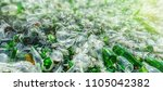 background of recycle pieces of ... | Shutterstock . vector #1105042382