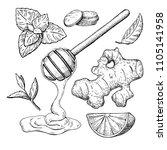 honey  ginger  lemon and mint... | Shutterstock . vector #1105141958