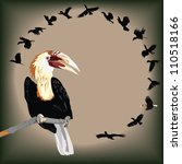 vivo,asia,pico,hermosa,ave,extraño,negro,rama,brillante,colección,colorido,copia,dibujo,en peligro de extinción,especies en peligro de extinción