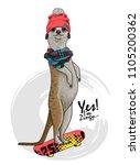 vector meerkat with a... | Shutterstock .eps vector #1105200362