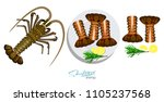 meat spiny lobster with... | Shutterstock .eps vector #1105237568