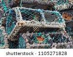 Pile Of Mesh Rope Crab Or...