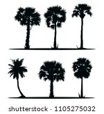 tree silhouettes of asian palms....   Shutterstock .eps vector #1105275032