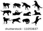 Stock vector dog silhouette 11053837