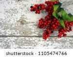 Christmas holly berries and...