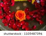 rose leaves floating on the...   Shutterstock . vector #1105487396