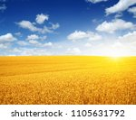 wheat field and sun in the sky  | Shutterstock . vector #1105631792