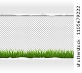 green grass and ripped paper... | Shutterstock .eps vector #1105679222