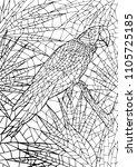 ara parrot in green tropical...   Shutterstock .eps vector #1105725185