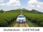 mocchau  vietnam   may 16  2018 ...   Shutterstock . vector #1105745168