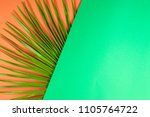 tropical palm leaf with...   Shutterstock . vector #1105764722