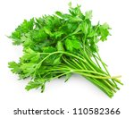 fresh green parsley isolated on ... | Shutterstock . vector #110582366