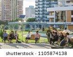 modern apartment buildings ... | Shutterstock . vector #1105874138