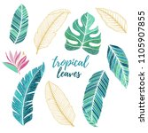 vector tropical set with... | Shutterstock .eps vector #1105907855