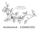 sketch floral botany collection.... | Shutterstock .eps vector #1106001332