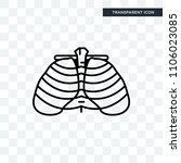 human ribs vector icon isolated ... | Shutterstock .eps vector #1106023085