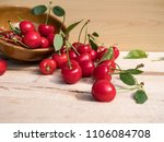 fresh cherry group with leaves... | Shutterstock . vector #1106084708