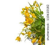 Stock photo border of wild flowers on a white background 110610182