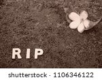 rest in peace. old flower  ...   Shutterstock . vector #1106346122