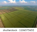 the rice fields are flooded... | Shutterstock . vector #1106575652