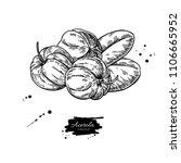 acerola fruit vector drawing.... | Shutterstock .eps vector #1106665952