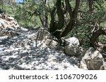 the white stony trekking path... | Shutterstock . vector #1106709026