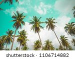 coconut palm trees   tropical... | Shutterstock . vector #1106714882
