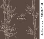 bamboo  bamboo stalk and leaves.... | Shutterstock .eps vector #1106883158