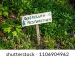 shoreland restoration shoreline ...   Shutterstock . vector #1106904962
