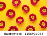 spring flowers pattern isolated ... | Shutterstock . vector #1106931065