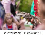 Man Holding An Alligator