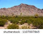 the sonora desert in central... | Shutterstock . vector #1107007865
