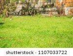 gardening in the summer house...   Shutterstock . vector #1107033722