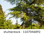 vintage lamp   with green trees ... | Shutterstock . vector #1107046892