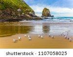 gulls on a sandy beach....   Shutterstock . vector #1107058025