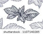 leaves of a plant   linear art... | Shutterstock .eps vector #1107140285