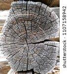 old sawed wood  background | Shutterstock . vector #1107158942