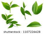 set of realistic green tea... | Shutterstock .eps vector #1107226628