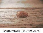 date palm fruit or kurma  ... | Shutterstock . vector #1107259076