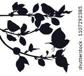 birds in the garden black... | Shutterstock .eps vector #1107292385