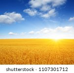 wheat field and sun in the sky | Shutterstock . vector #1107301712
