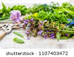 fresh and aromatic herbs on a... | Shutterstock . vector #1107403472